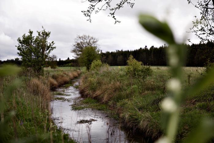Den såkaldte landbrugspakke får kritik af høringsparter, der bl.a. advarer om, at vandmiljøet vil lide skade, hvis forslaget vedtages.
