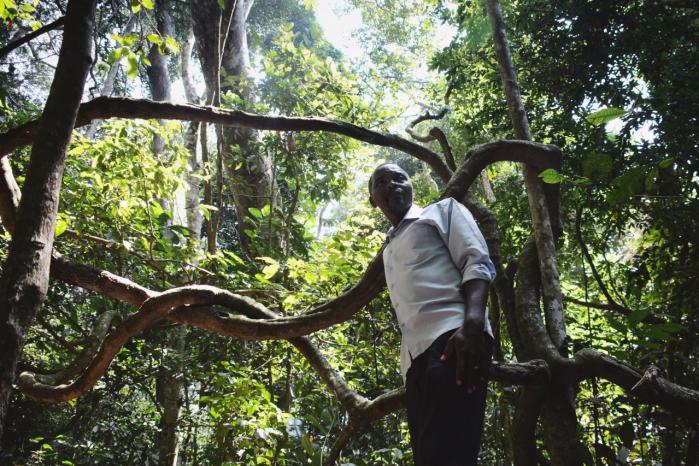 I Zika-skoven i Uganda avler mere end 70 myggearter i træerne. Tilsammen huser de adskillige sygdomsfremkaldende stoffer, der kan være dødbringende og potentielt overføres til mennesker.