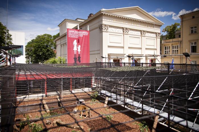 De fire tigere har 120 kvadratmeter, mere end dobbelt så meget som dyrlæger foreslog den politiske kunstnergruppe Zentrum für Politische Schönheit. På samme areal bor der i Hangar 3 på Tempelhof-flyplads i det sydlige Berlin op mod 80 asylansøgere.