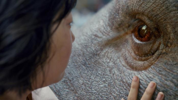 Mija (Seo-Hyun Ahn) sammen med sin gigantiske kælegris, Okja, i Bong Joon-hos underholdende Cannes-film, 'Okja'. Foto: Netflix