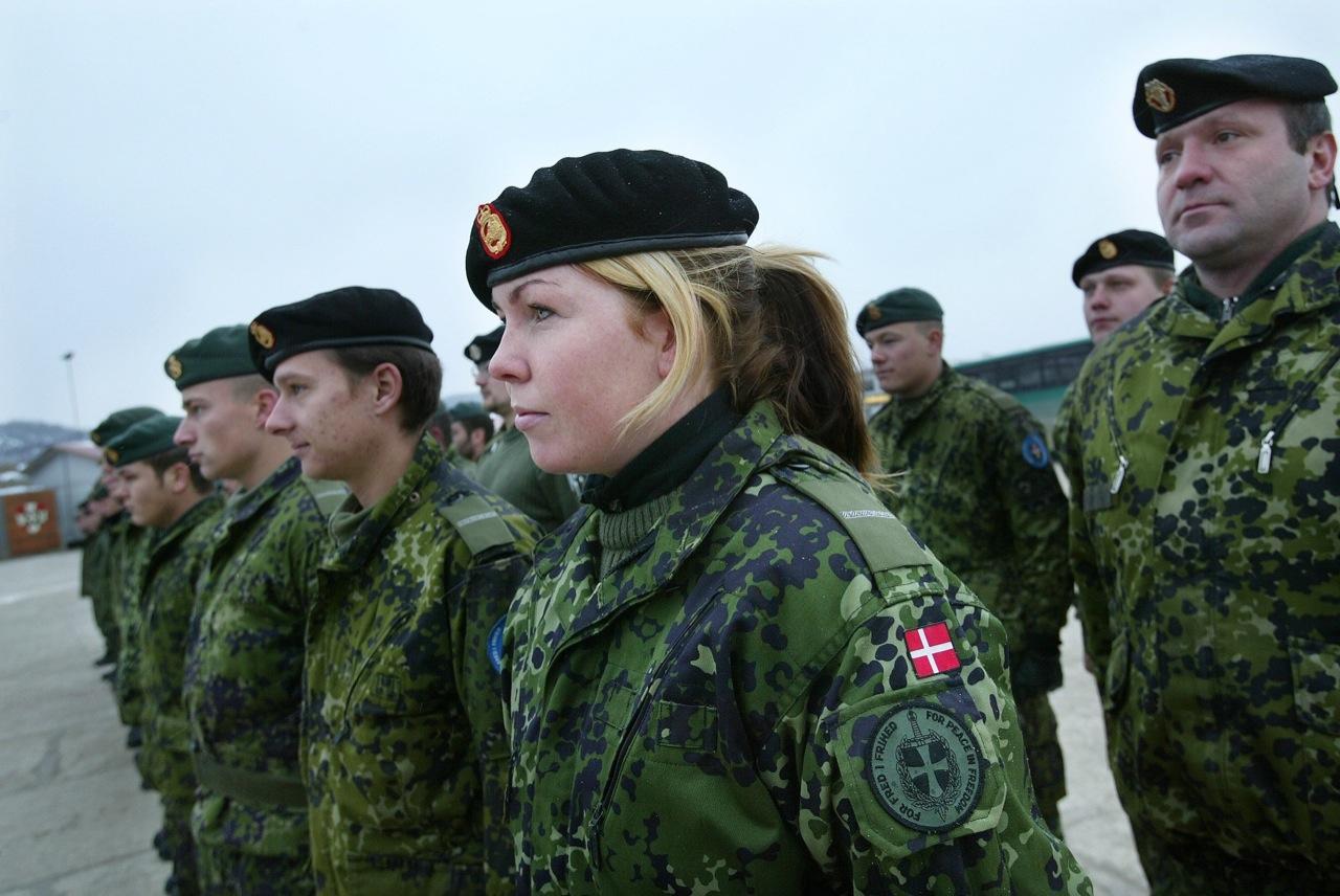 danske forsvar