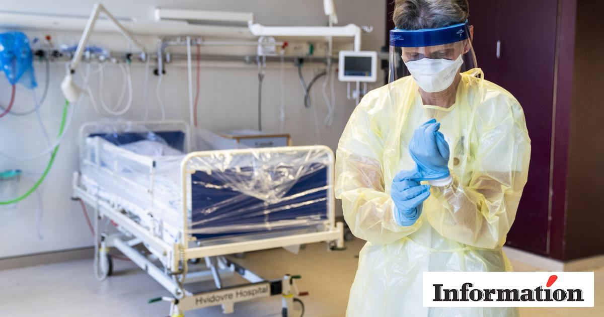 Svensk Epidemiolog Coronaofre Ville Formentlig Alligevel Vaere