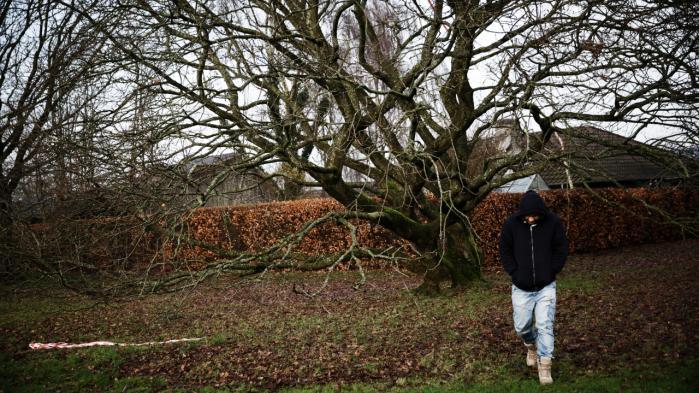 Tolken 'Hector', der har arbejdet for det danske militær i Afghanistan, har fået afslag på hjælp efter tolkeaftalen. En af årsagerne til, at han ikke kunne få hjælp efter tolkeaftalen var, at tolkene skal have arbejdet efter en  skæringsdato i december 2012.