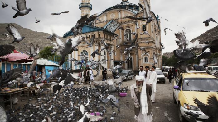 Carsten Jensen er taget til Kabul. Her møder han en by med visse fremskridt, med plastic og beton. Og en af Afghanistans tre millioner narkomaner.