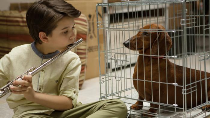 Wiener-Dogs første af mange ejere, er en kræftsyg dreng.