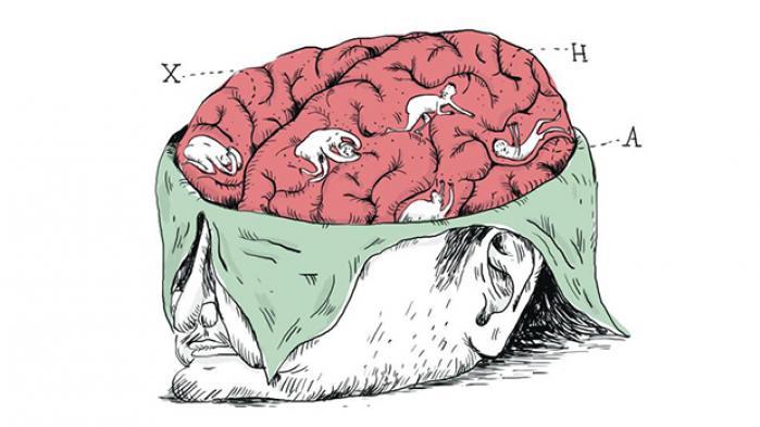 Nedbrydning af hjerneceller, nedsat funktionsevne og spasmer: Huntington den Ene eller Huntington den Anden?