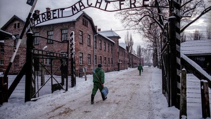 I ugevis har Google været under pres, fordi søgemaskinen ikke har korrigere algoritmerne, så man ikke i udgangspunktet ledes hen til hadefuldt antisemitisk indhold, når man søger »Fandt Holocaust sted?«.