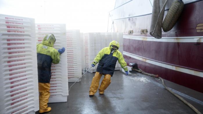 I 2005 indgik den daværende VK-regering en ny aftale om regulering af dansk fiskeri med DF. Hidtil havde staten tildelt kvoter til fiskerne en gang om måneden eller hver anden uge. Med den nye regulering blev kvoterne fordelt én gang om året, og de fiskere, som havde fanget flest fisk i de forgående tre år, fik tildelt de største kvoter. Formålet var bl.a. at sikre fiskerne en bedre indtjening.