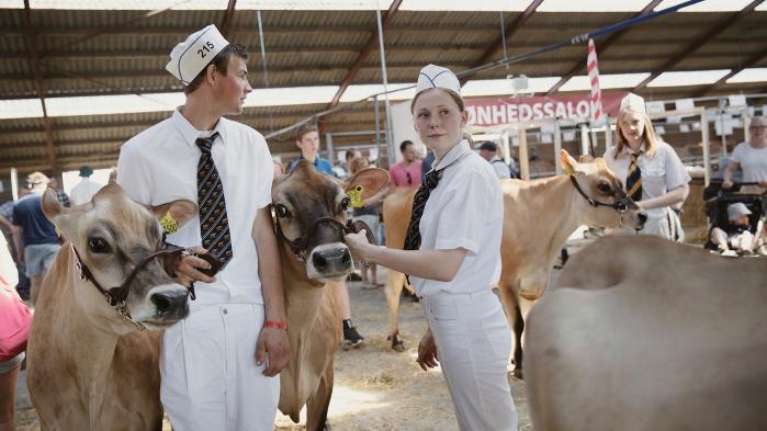 I weekenden var 90.000 danskere på Roskilde Dyrskue for at se landmænd konkurrere i hest, ko og traktortræk. Information tog på bar mark for at snakke med en branche, der føler sig groft misforstået