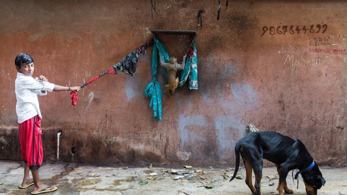 Verden over er voksende storbyer ved at opsluge deres gamle fattigkvarterer, og i Indien blæser regeringen til kamp mod landets slum. Det handler ikke kun om at løfte leveforholdene, men også om kontrol med de ofte lukrative kvadratmeter. I gigantiske Dharavi i Mumbais centrum har beboerne dog en helt anden plan for, hvad der skal ske med deres hjem