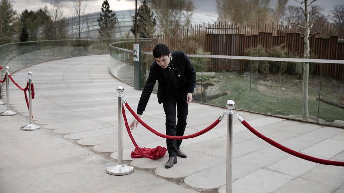 Information har fulgt ankomsten af de to mest omdiskuterede dyr på dansk jord nogensinde, de kinesiske pandaer Mao Sun og Xing Er. For pandaerne er ikke kun bedårende, de er et symbol på forholdet mellem Danmark og Kina og et udtryk for verdens mest nuttede form for blød magt