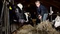 Viceformand i Landbrug og fødevarer, Lone Andersen, advarer nu om udenlandske investorer opkøb af dansk landbrug.