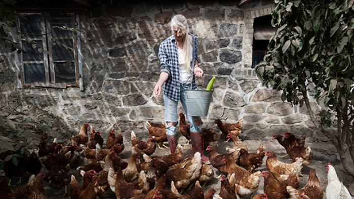 Lone Vitus nærede et stort ønske om at blive landmand. Men de erfaringer, hun gjorde sig, har forvandlet hende til en af det moderne landbrugs skarpeste kritikere. Hendes nye bog løfter sløret for, hvordan hele nutidens fødevareproduktion foregår