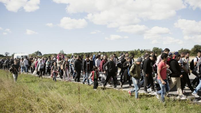 Asylansøgere på motorvejen ved Rødby sidste efterår. Regeringen lægger i et lovforslag op til at slanke Flygtningenævnet.