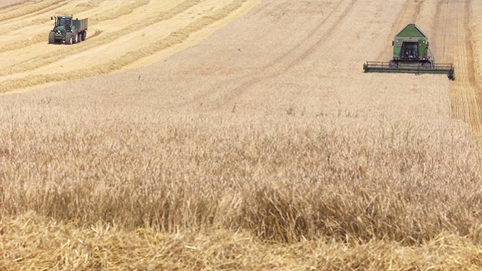 'Hvad skal vi med landbruget?' hedder Jørgen Steen Nielsens nye bog, der er en del af Informations kampagne 'vores mad - vores jord' om det danske landbrugs tilstand og mulige fremtidsudsigter. Men kan vi bruge den som udgangspunkt for en dialog med dem, der sidder på magten i dansk landbrug? Vi har bedt fire repræsentanter fra det traditionelle landbrug anmelde bogen