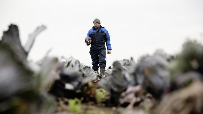 Der er stadigt et stort potentiale i den lokale fortælling om økologisk producerede varer. Som på Birkemosegaard, der er et biodynamisk landbrug ved Sjællands Odde, der leverer grøntsager til mange af de hotte restauranter i København.