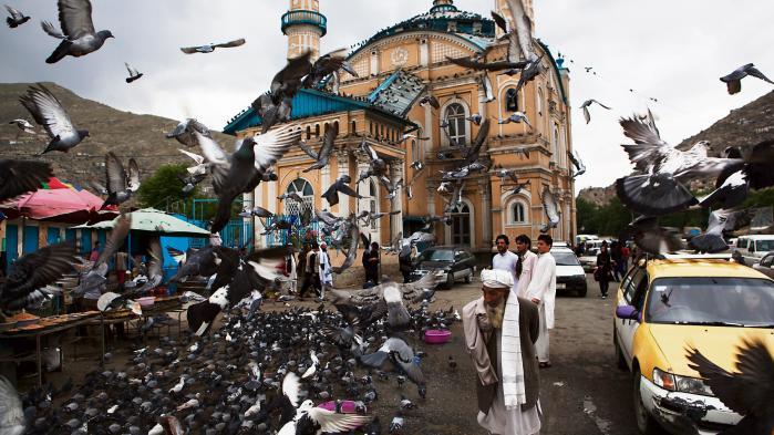 Carsten Jensen og den norske dokumentarist Anders Hammer har i deres bog bl.a. været i Kabul, som vi har skildret her i spalterne. Resultatet er imponerende og flot. Paradoksalt nok er det også bogens problem.