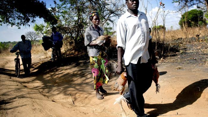 Ugandas grænser er vidt åbne, og sydsudanesere er automatisk sikret status som flygtninge i Uganda. FN vurderer, at 925.000 sydsudanesere vil ankomme til Uganda i år.