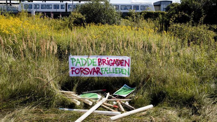 Onsdag morgen meldte Københavns stærkt pressede overborgmester Frank Jensen(S) ud, at han ikke længere ønsker at bygge boliger på den del af Amager Fælled, hvor det oprindeligt var planlagt. Det er en sejr for de protesterende.
