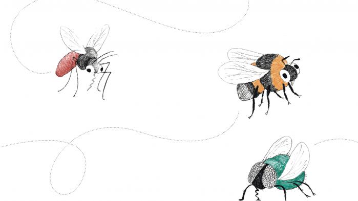 Tre fjerdedele af de flyvende insekter i Tysklands naturområder er forsvundet over de sidste 25 år. Det kan få alvorlige konsekvenser for alt liv på Jorden, advarer forskere
