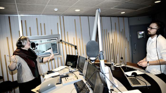 Onlineposten, der har til formål at mudre nyhedsstrømmens vande til,er etableret af Kirsten Birgit Schiøtz Kretz Hørsholm, Frederik Cilius' pseudonym som radiovært på Den Korte Radioavis, med det formål at få genvalgt den detroniserede spidskandidat for De Radikale i København, Anna Mee Allerslev.