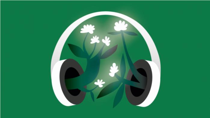 I denne uges podcast fortæller Jeppe Wohlert fra tænketanken DEA om, hvordan han mener, at regeringens grønne forskningsmilliarder bedst kan bidrage til den grønne omstilling
