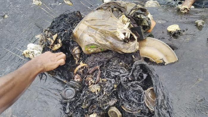 En død kaskelothval, der mandag skyllede op på en strand på den indonesiske ø Sulawesi, havde sandaler, kopper og mere end 1000 andre stykker plastik i maven